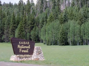 Kaibab_Entrance-Sign