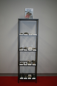 This display in LJB's office showcases the variety of mussels found in Ohio waterways.